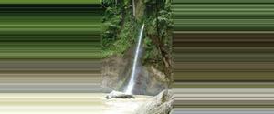 Costa Rica Refugio Nacional de Vida Silvestre Barra del Colorado