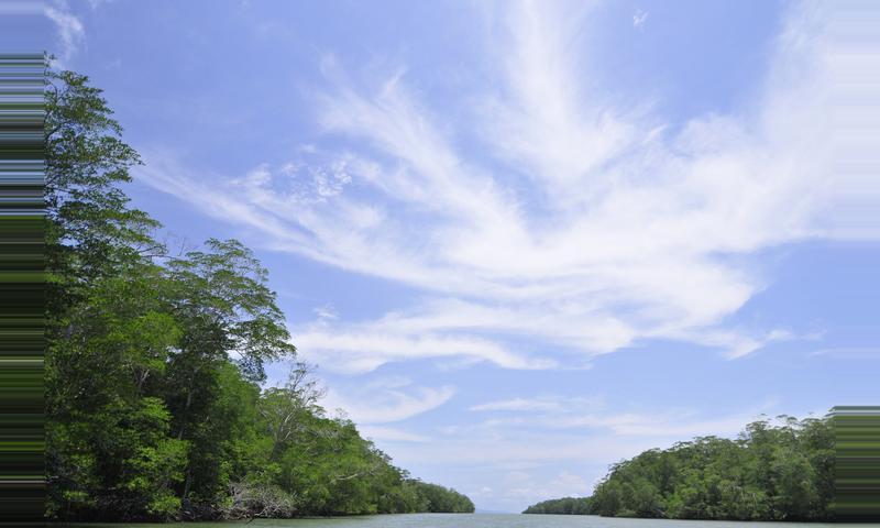 Reserva Natural Punta Patiño