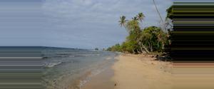 Panama Wizard Beach