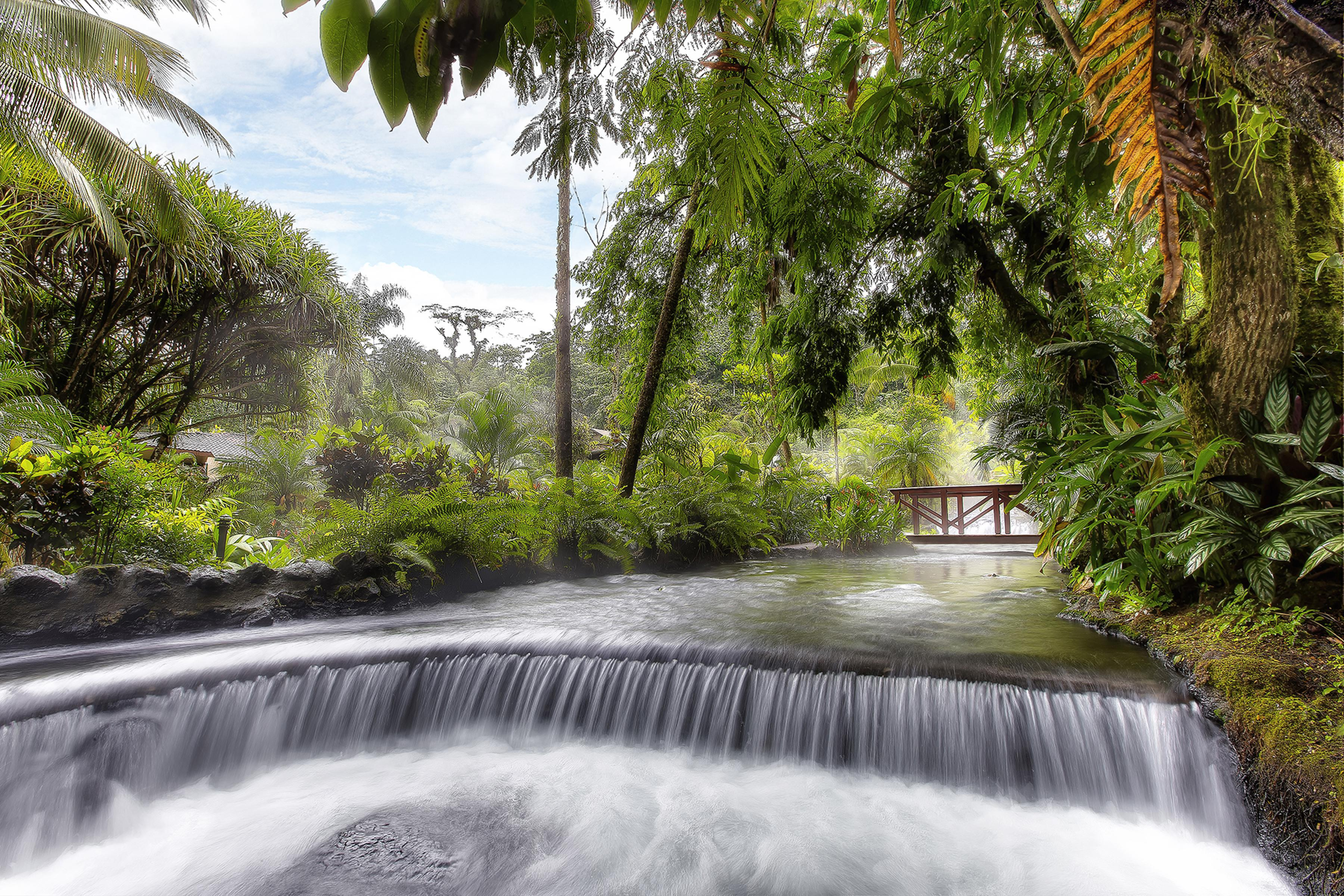 Día Completo en Tabacón Hot Springs