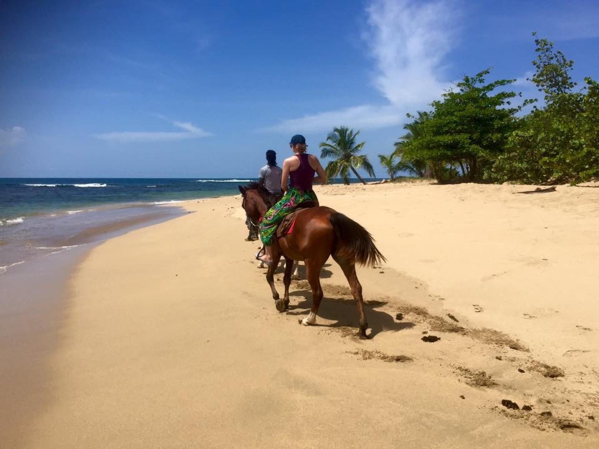 Beach and Jungle Horseback Riding Tour