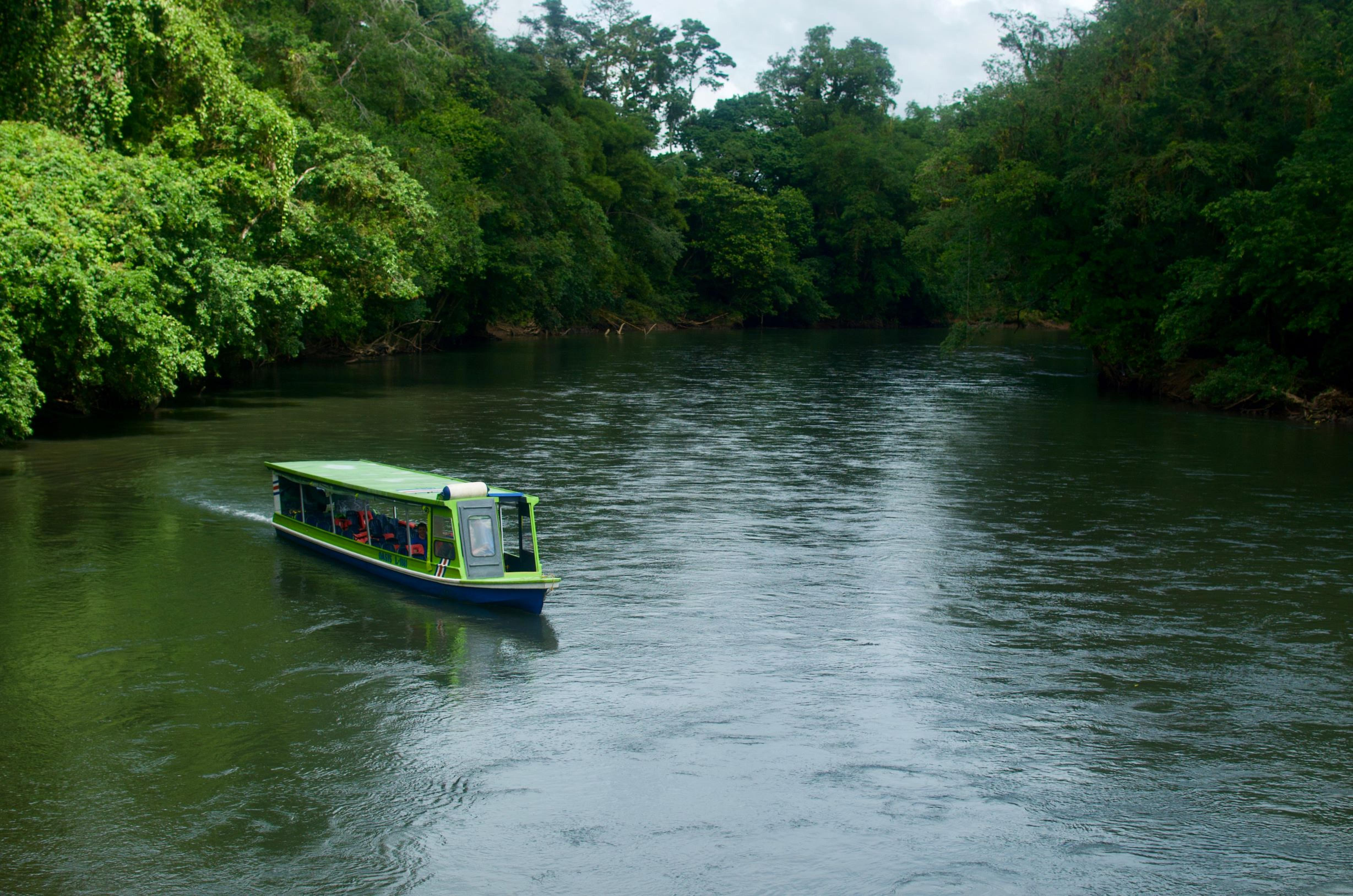Sarapiqui River Safari Guided Tour