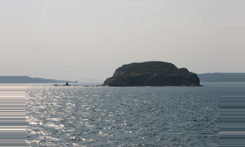 Guayabo Island