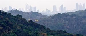 Panama Gamboa