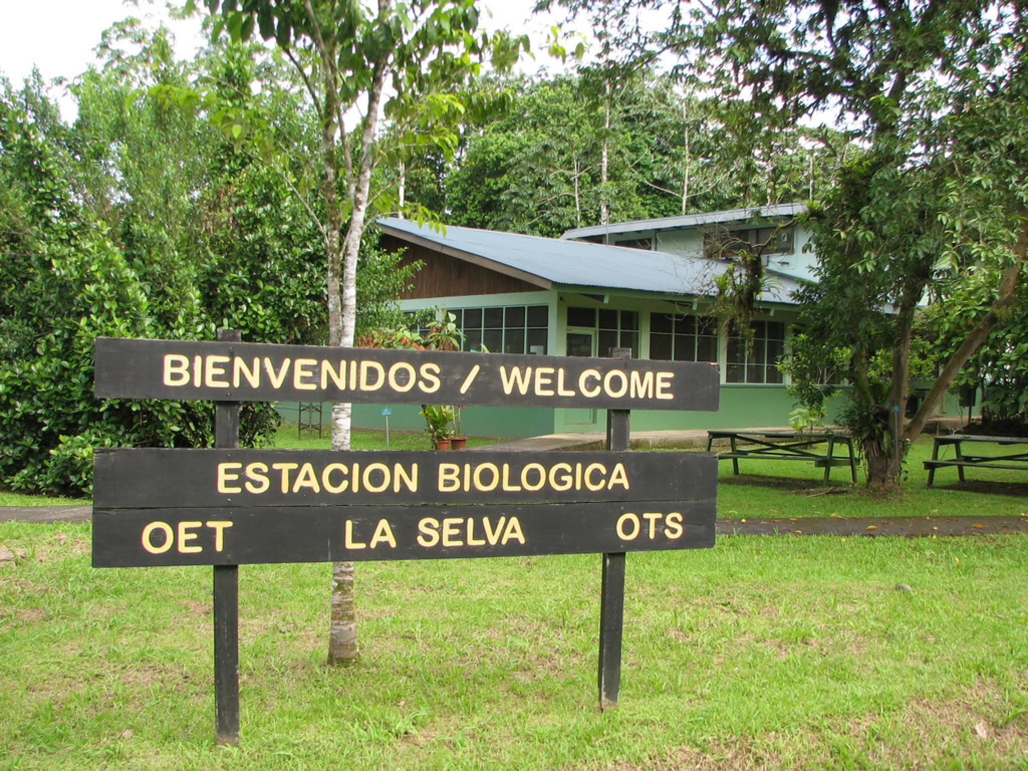 La Selva Biological Station Costa Rica 2020 Travel Guide Anywhere