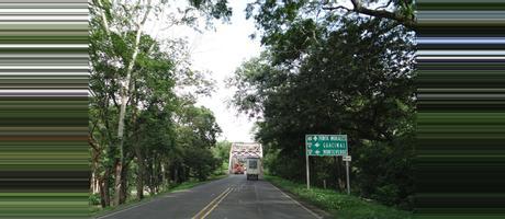 Costa Rica Lagarto