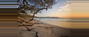 Costa Rica Playa Flamingo