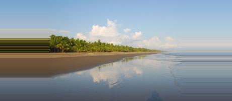 Costa Rica Playa Palo Seco
