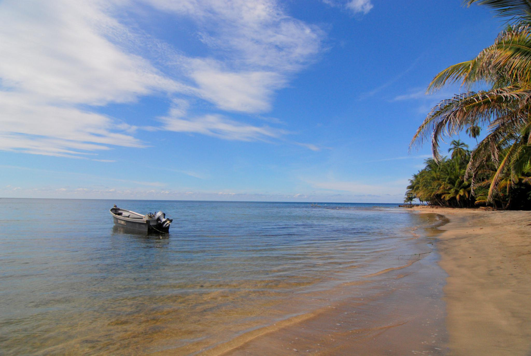 Puerto Viejo Caribbean Costa Rica 2020 Travel Guide Anywhere