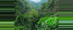 Costa Rica San Gerardo de Rivas