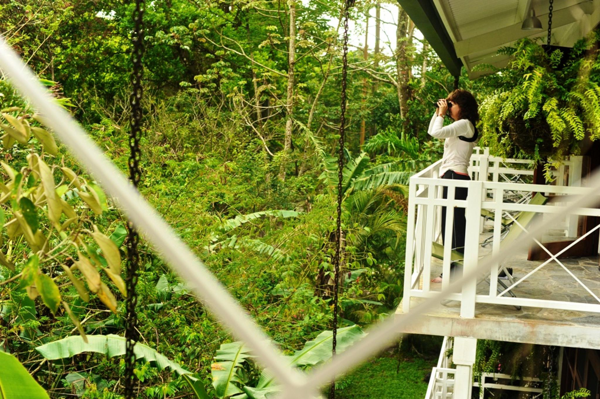 Canopy Lodge & Canopy Lodge - El Valle de Anton Panama