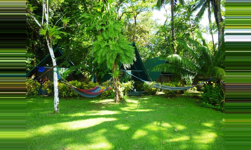 Corcovado Tent Camp