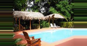 Costa Rica Mono Feliz