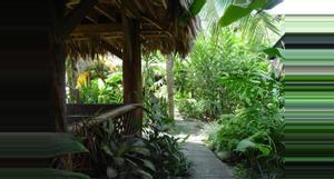 Costa Rica Kayas Place