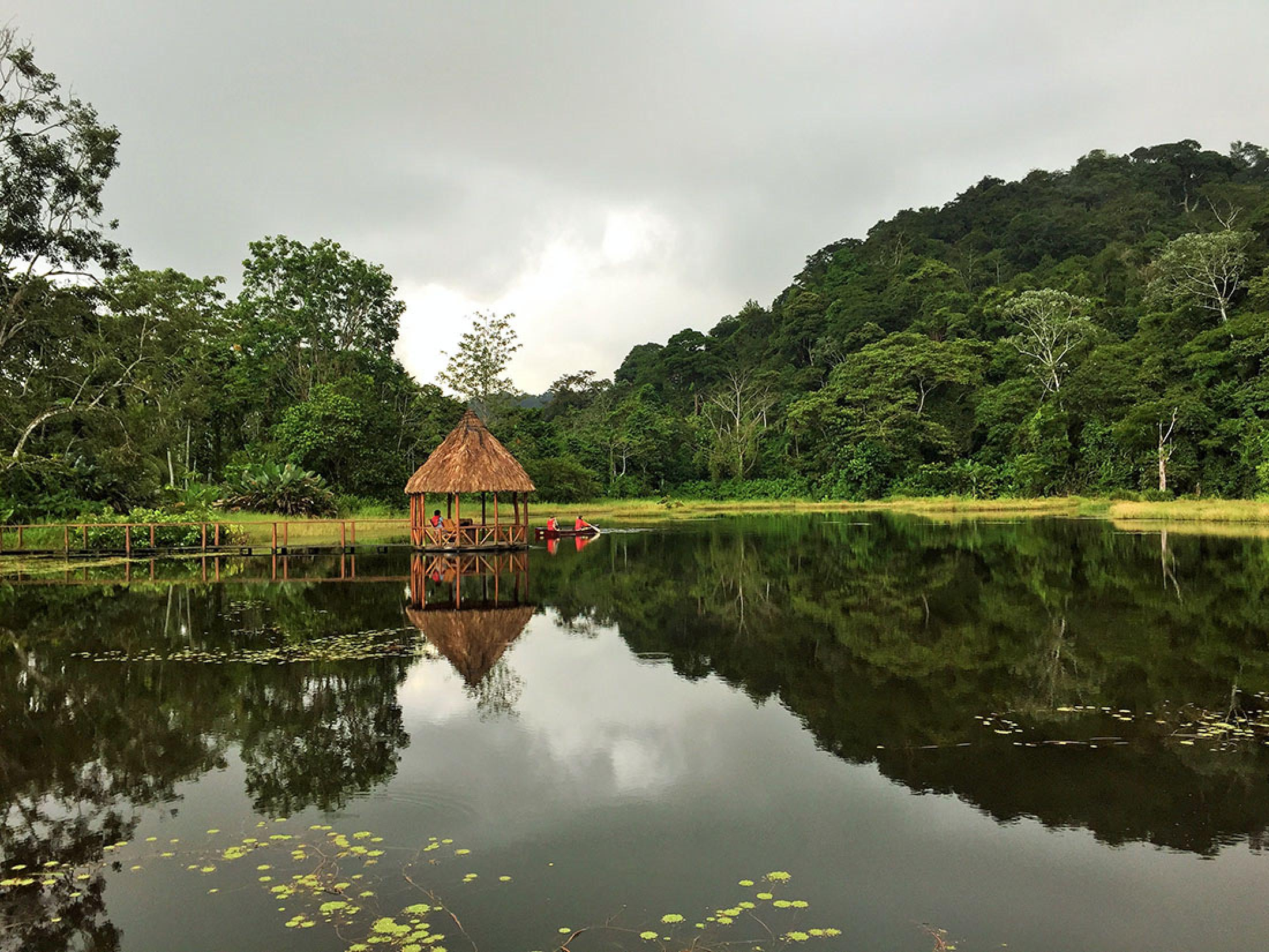 Maquenque Eco Lodge & Tree Houses