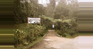 Guatemala RESERVA NATURAL RANCHITOS DEL QUETZAL