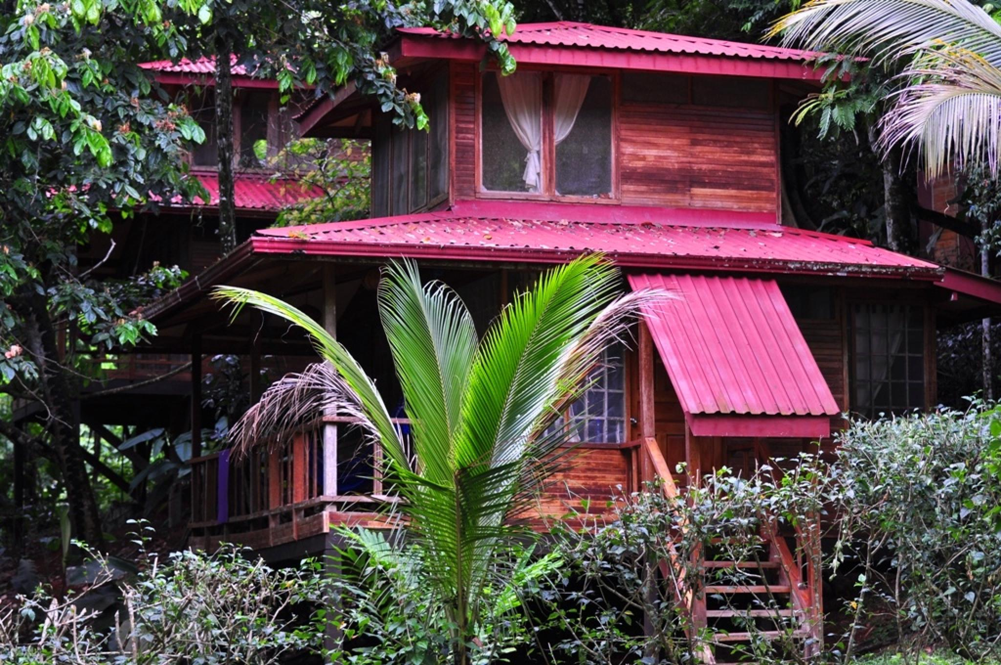 Costa Rica Bungalow Resorts Part - 16: Anywhere