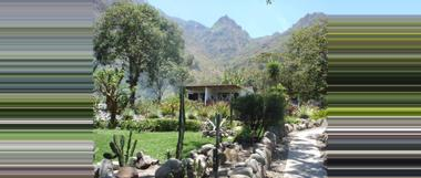 Guatemala Vulcano Lodge