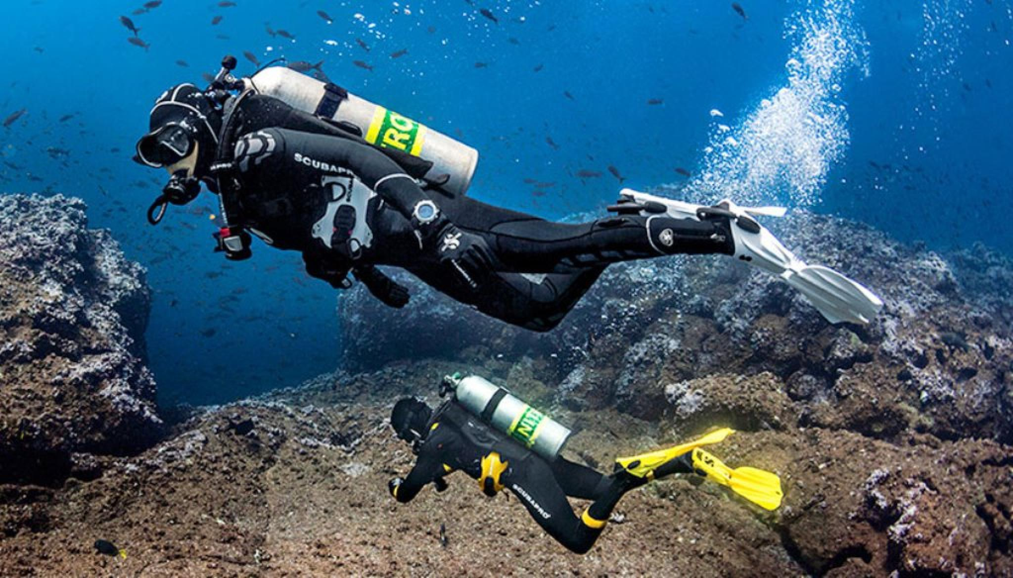 Dives for Certified Divers in Pucusana