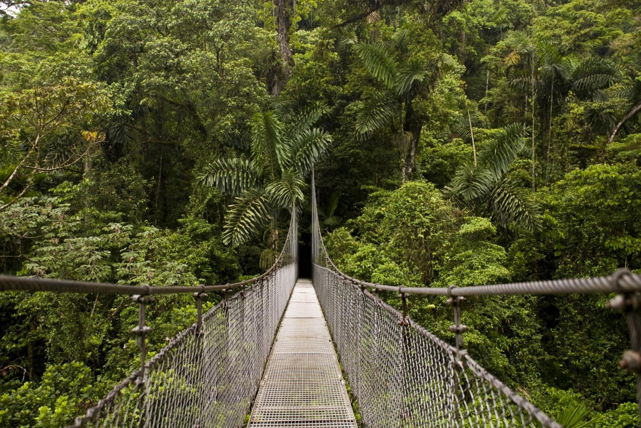 2 in 1 Hanging Bridges & Fortuna Waterfall