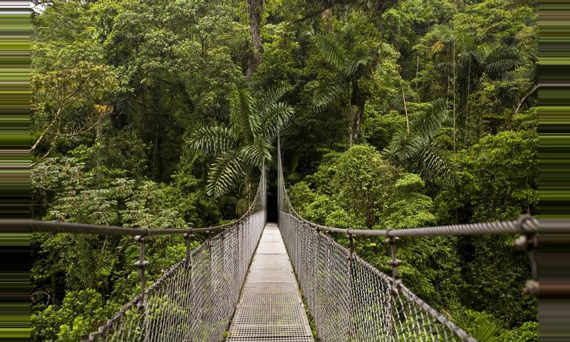 2 in 1 Hanging Bridges and La Fortuna Waterfall