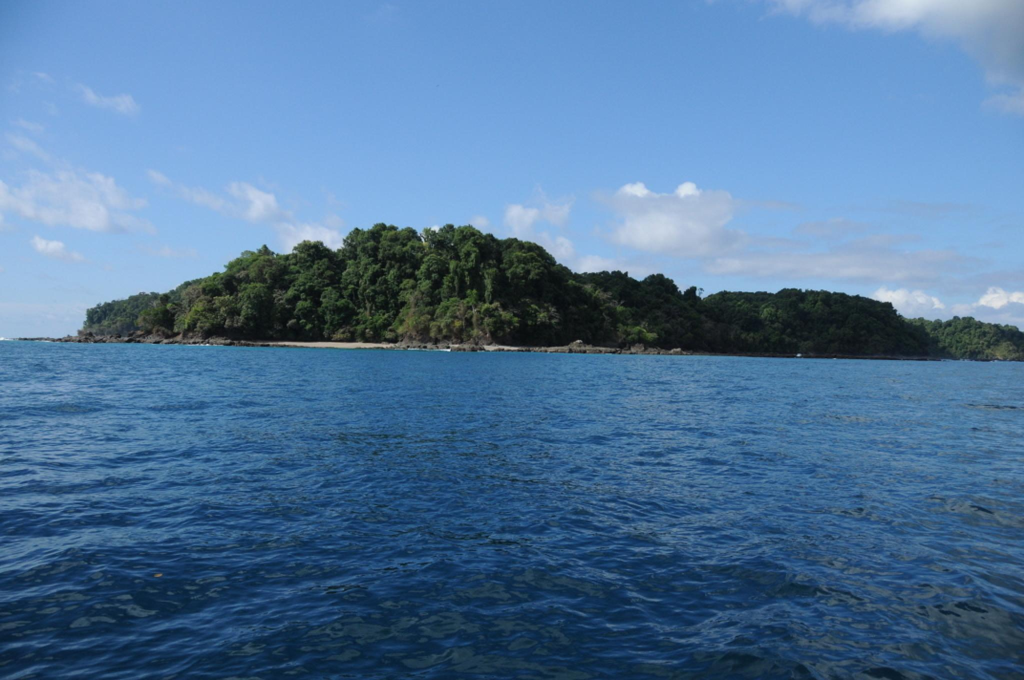 Snorkeling at Caño Island and visit to Violines Island