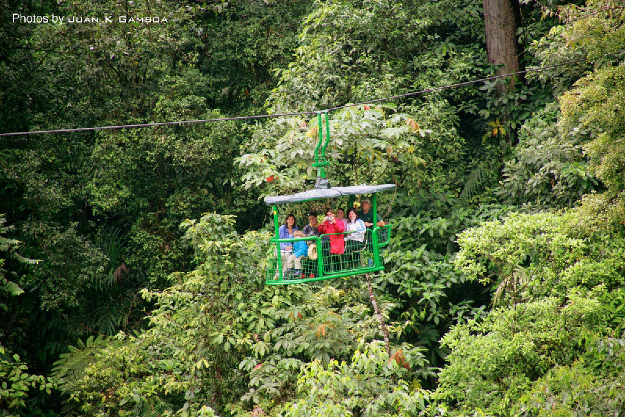 Teleférico del Bosque Lluvioso
