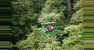 Costa Rica Rain Forest Aerial Tram