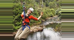 Costa Rica Canopy Tour en el Caribe