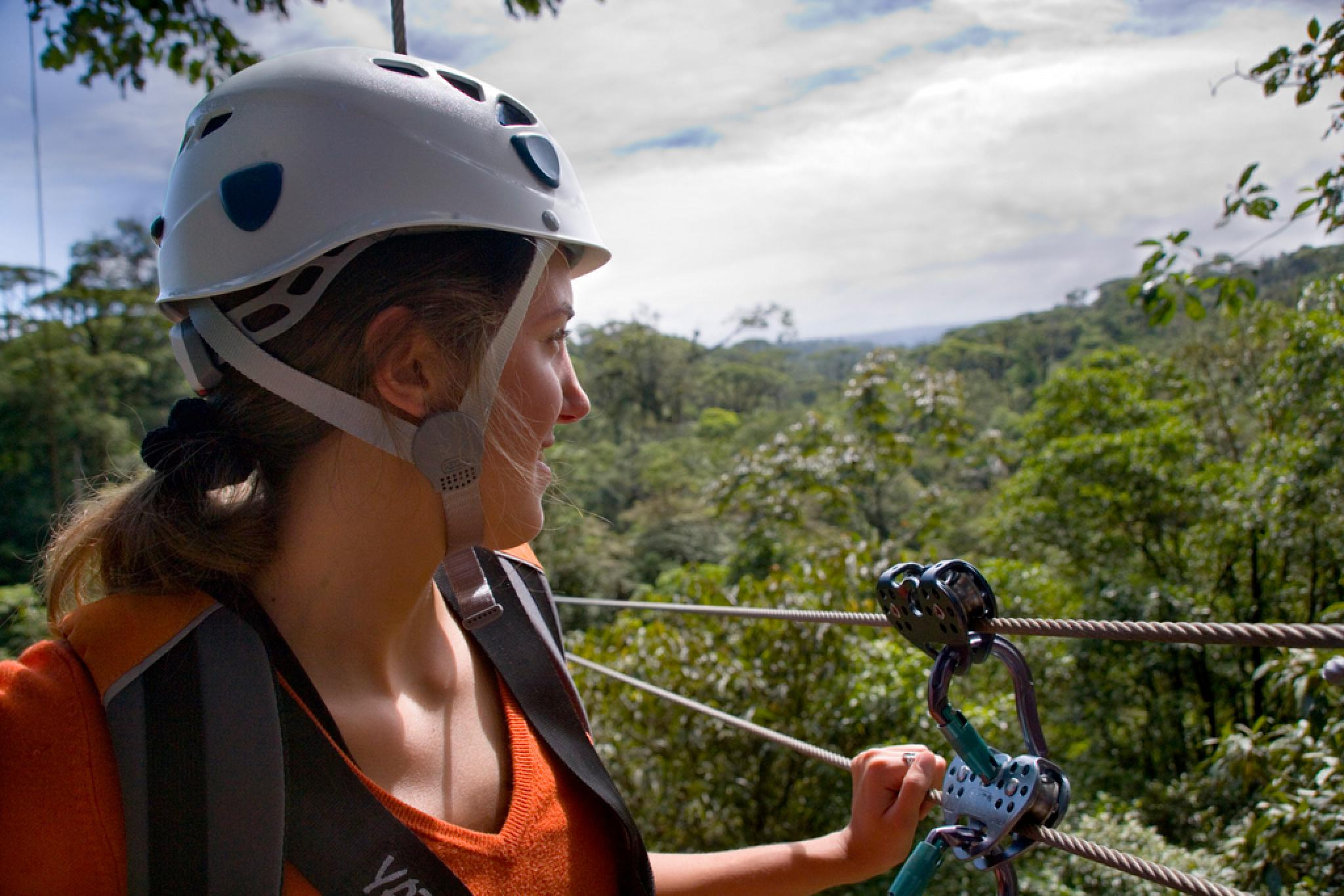 Rain Forest Canopy Tour