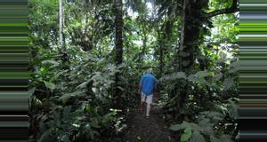 Costa Rica Ecocentro Danaus