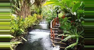 Costa Rica Bridges, Volcano, Waterfall & Tabacon Hot Springs