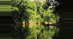 Costa Rica 4-in-1 Safari Float and Paradise Hot Springs