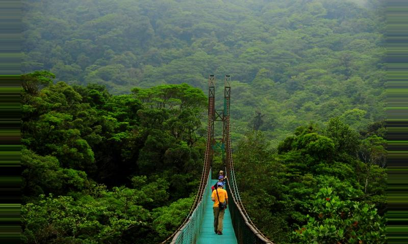 Image result for puentes colgantes costa rica