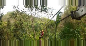 Belize Cave Tubing & Zipline