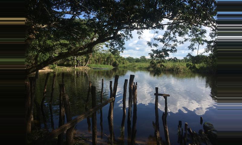Estación Biológica Las Guacamayas