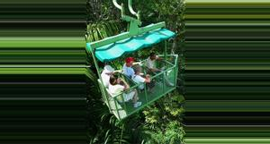 Panama Teleférico Gamboa y Exhibiciones de Vida Silvestre