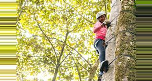 Costa Rica Arboreal Tree Climbing Tour