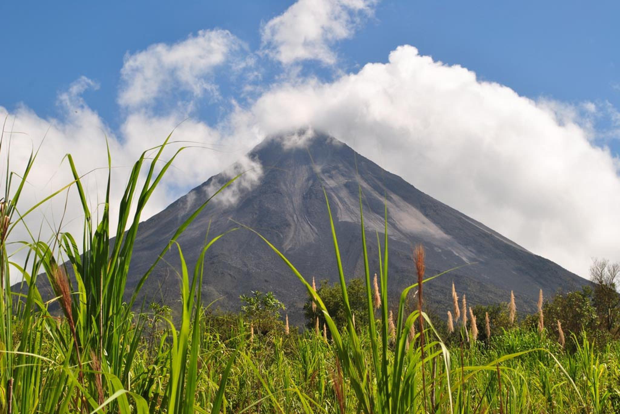 Arenal Volcano History Walk and Los Perdidos Hot Springs
