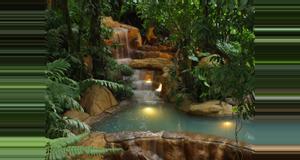 Costa Rica Arenal Volcano History Walk and Los Perdidos Hot Springs