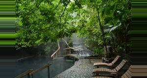Costa Rica Arenal Volcano Walk & Eco Termales Hot Springs