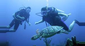 Belize Buceo en el Sistema de Barreras del Arrecife de Belice