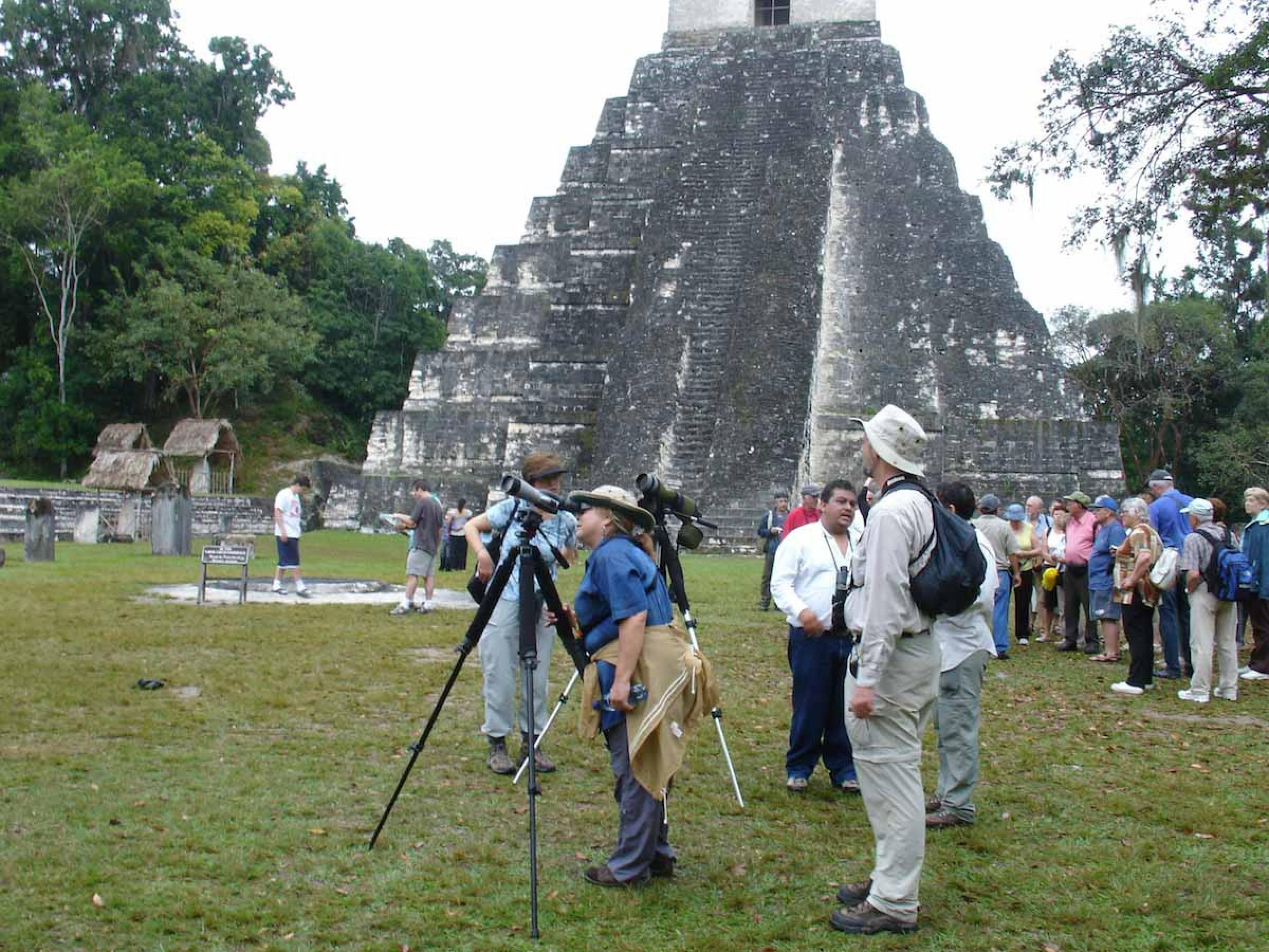 Birding Tour at Tikal