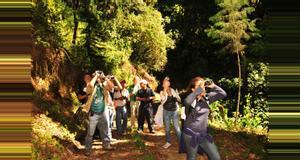 Guatemala Observación de aves en Finca Filadelfia