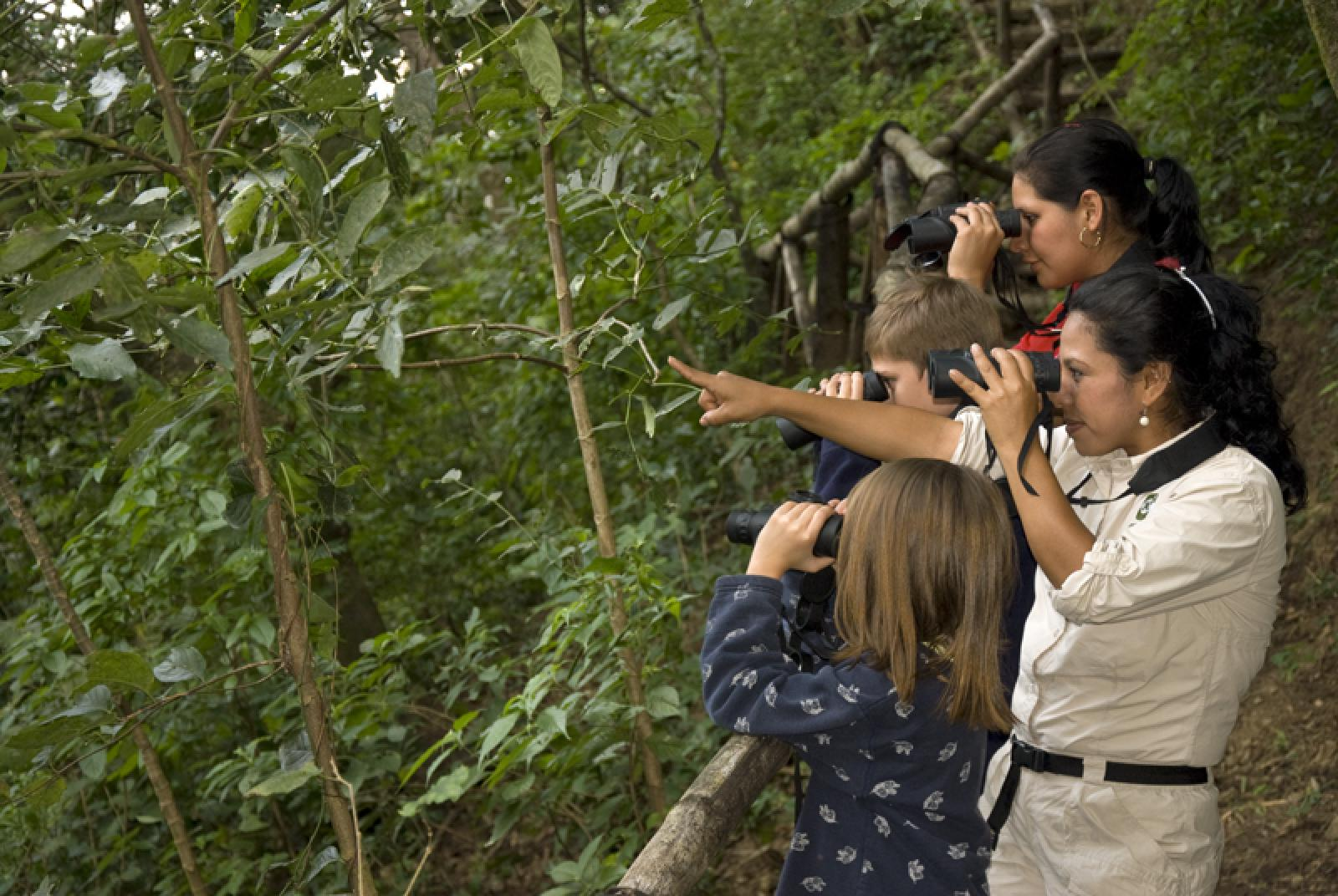 La Reunion Birdwatching Tour