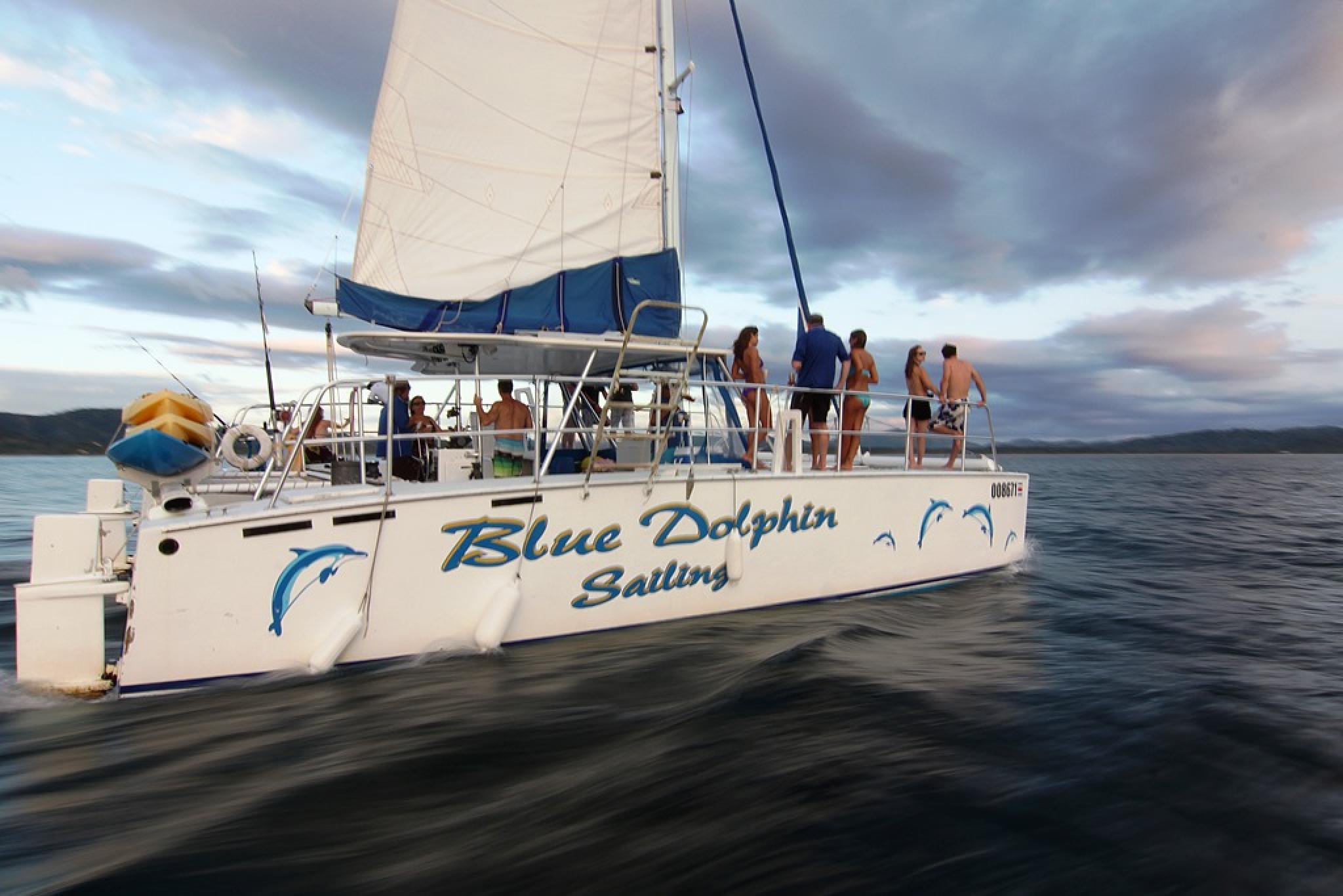 Tour en Catamarán Blue Dolphin