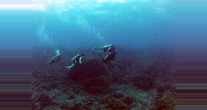 Costa Rica Caño Island Scuba Diving Tour