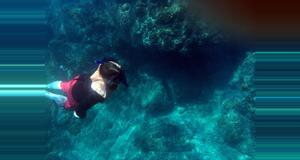 Costa Rica Caño Island Snorkeling Tour