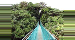 Costa Rica Combo Canopy Tour y Puentes Colgantes