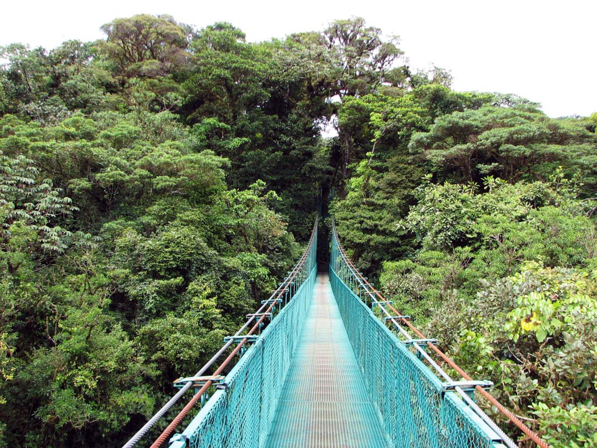 Selvatura Zip Lines, Suspension Bridges & Butterflies